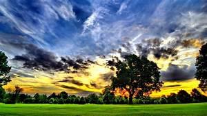 Beautiful, Nature, Backgrounds