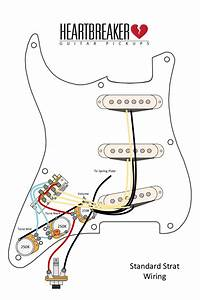Strat Wiring Diagram Schematic