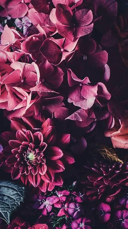 Iphone Floral Wallpapers Flower Flowers Preppy 65k
