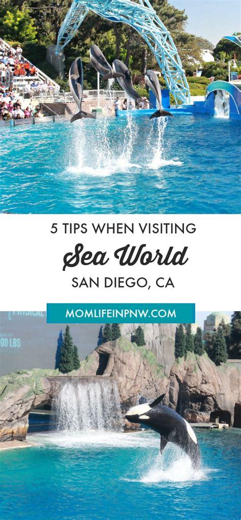 Tips When Visiting Seaworld San Diego California