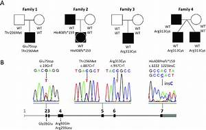 Genetic Information On 5 Subjects Carrying Nr5a1 Mutations