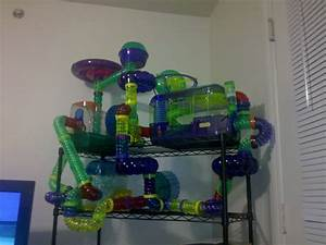 Cool hamster cages on Pinterest | Hamster Cages, Hamsters ...