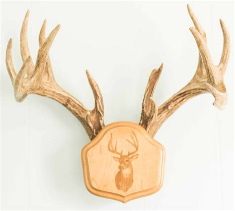 deer antler ls laser engraved quot the deer stand quot antler mounting kit
