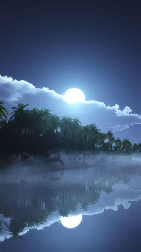 wallpaper river  hd wallpaper sea palms night moon