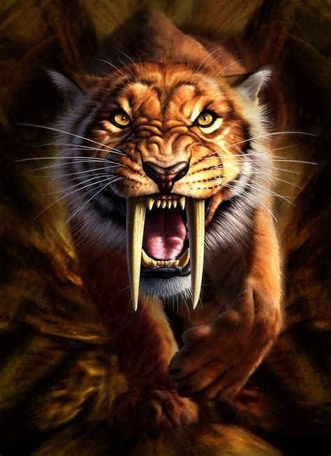 sabertooth tiger art animal posters animals