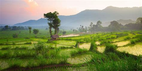 Land acquisition in Bali as a foreigner - Emerhub