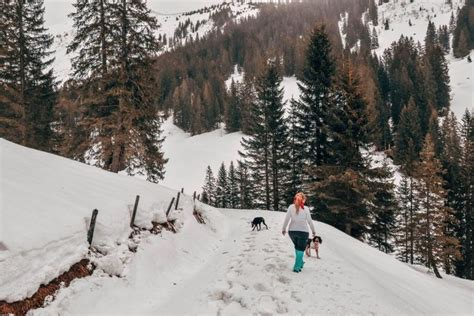 Top 10 Things to Do in Interlaken Winter hiking