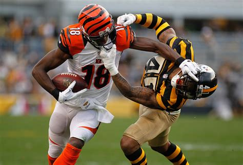 Ravens Win, Bengals Increase Lead