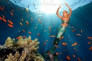 Mermaid Performer  U2013 Professional Mermaid For Hire