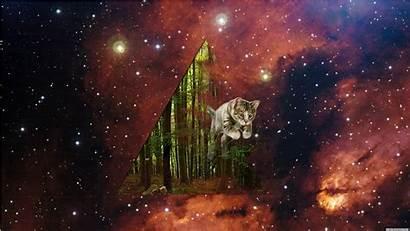 Space Cat Cats Wallpapers Galaxy Desktop Cool