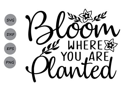 Similar design products to bloom where you are. Bloom where you are planted SVG, Easter | Design Bundles