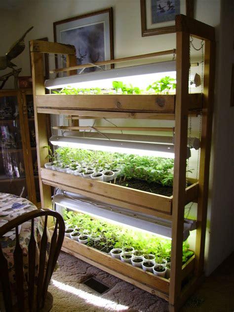 grow light setup hardening seedlings the arid land homesteaders league