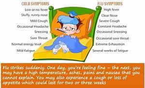 Flu Vaccine, Flu Vs Cold, Myths & Facts, Treatments for flu