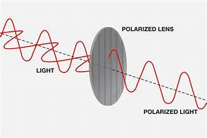 How Do Polarized Aviator Sunglasses Work