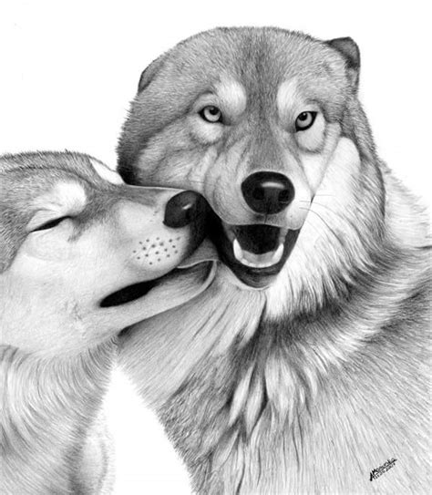 realistic animal drawings xcitefunnet