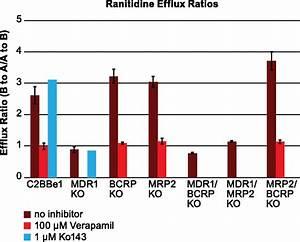 Zinc Finger Nuclease U2013mediated Gene Knockout Results In