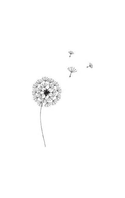 Dandelion Simple Drawing Stick Graphic Pencil Line