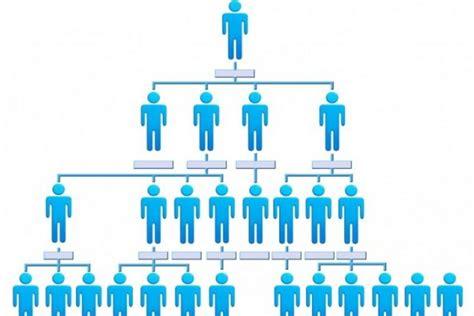 startup organizational structure