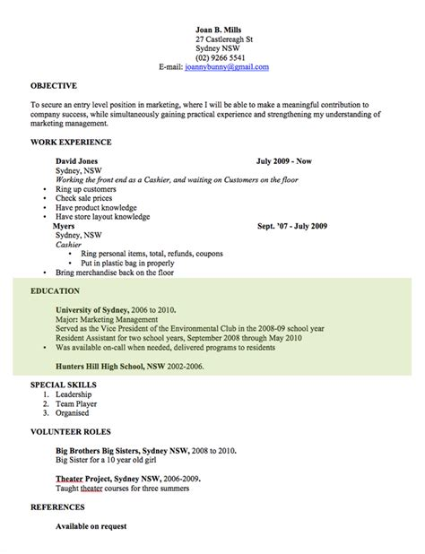 Professional Cv Template Word Document by Cv Template Free Professional Resume Templates Word