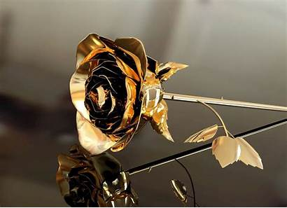 Rose Gold Background Wallpapers Screen Flower Leaf