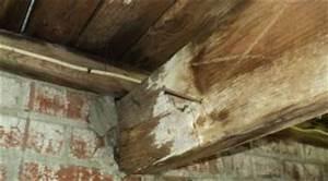 Infiltration Eau Toit : les sources d 39 infiltrations d 39 eau ext rieures par le toit le bricolage de a z ~ Maxctalentgroup.com Avis de Voitures