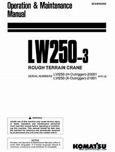 Komatsu Lw250