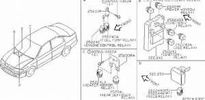 Infiniti G20 Relay Antiskid  Room  Engine  Abs