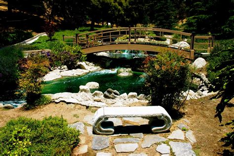 panoramio photo of the japanese garden at the grace