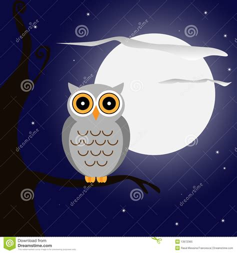 hibou la nuit photo libre de droits image 13972365