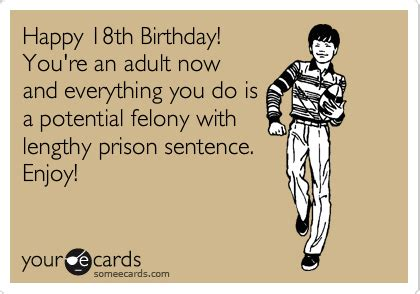 Adult Memes 18 - happy 18th birthday you re an adult now and everything you do is a potential felony with
