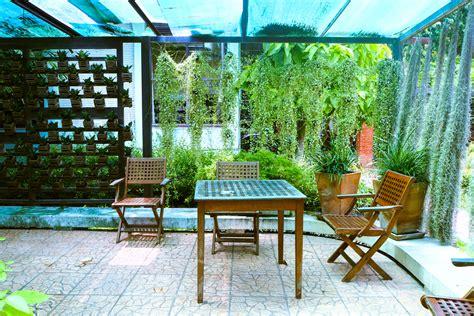 sichtschutz terrasse pflanzen pflanzen sichtschutz