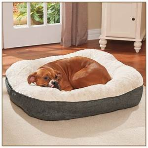 Best dog beds for medium sized dogs dog beds and costumes for Best pet beds for medium dogs