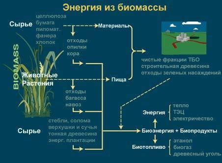 Использование биотоплива для энергетических целей