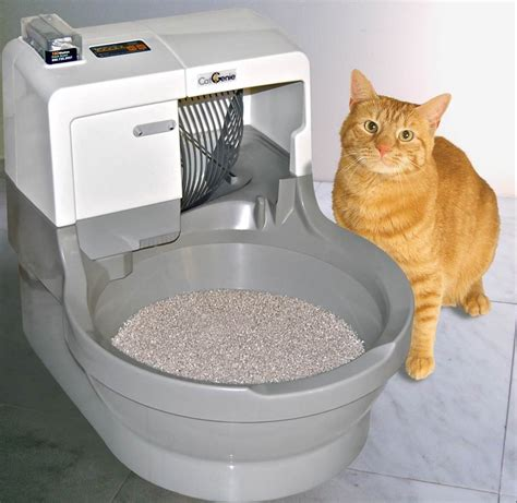 Litter Robot Open Air Review Read This Automatic Box Story