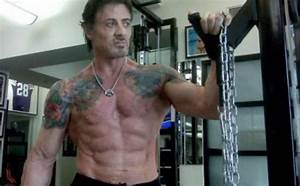 Body Fat Chart Men Sylvester Stallone Height Weight Body Statistics