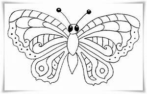 Ausmalbilder Zum Ausdrucken Ausmalbilder Schmetterling