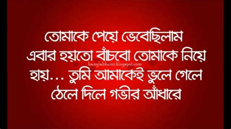 aj ami valobasar theke voi pai bangla sad love quote