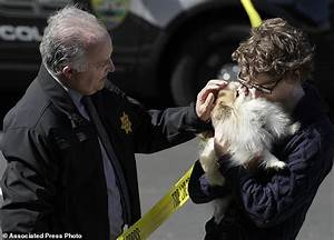 The Latest: YouTube shooting suspect animal rights ...