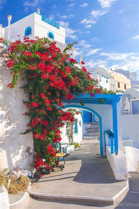 ~bougainvillea In Santorini Greece Hermosa Vista