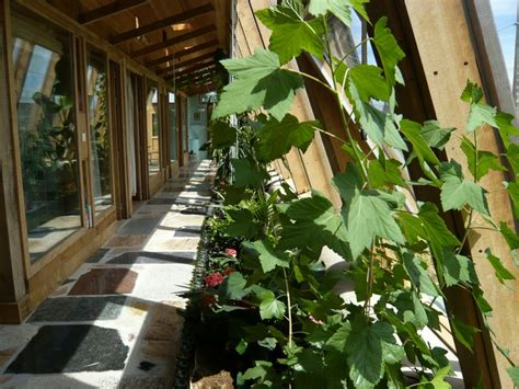 Wohnhaus Im Gewächshaus by Earthship Sch 246 Ner Autark Und Nachhaltig Wohnen Im