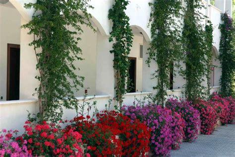Gabbiano Vieste Recensioni - offerte villaggio hotel gabbiano a vieste in puglia