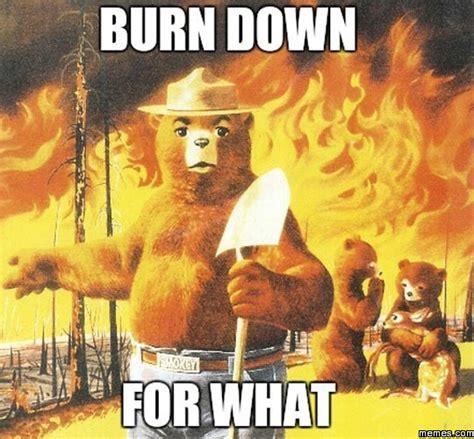 Smokey The Bear Meme Generator - burn down for what memes com