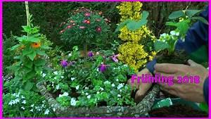 Blumen Im Sommer : blumen k bel fr hjahr sommer bepflanzung margeritten st mmchen erdbeeren und andere blumen youtube ~ Whattoseeinmadrid.com Haus und Dekorationen