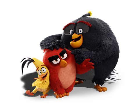 birdday angry birds
