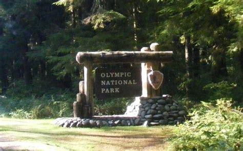 Olympic National Park, Mora Campground. Coughing Signs. Handicapped Signs. Famous Person Signs. Mania Symptoms Signs Of Stroke. Asbestos Removal Signs Of Stroke. Mood Swings Signs. Horse Farm Signs Of Stroke. Stop Signs Of Stroke