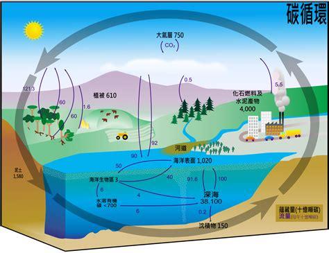 Filecarbon Cycle Cute Diagram Zh Hantsvg Wikimedia Commons
