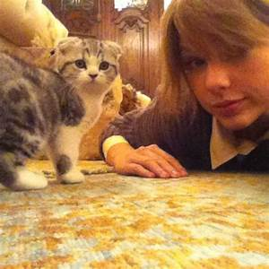 Meredith + Taylor Swift - Taylor Swift Photo (26559398 ...