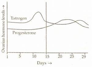 Cbse Class Xii Biology  Human Reproduction
