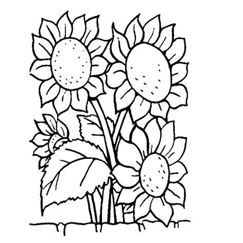 Bloem Kleurplaat Beterschap by Leuk Voor Zonnebloemen