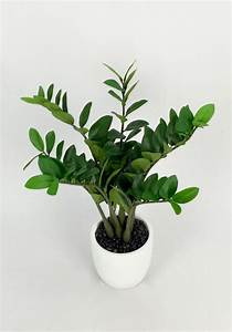 Artificial Plant Importers Australia Trees Flowers